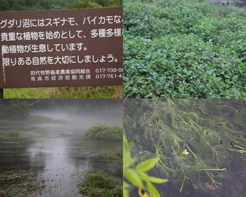 2010-08-14-1331-27.jpg