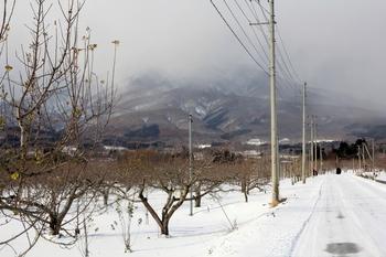 岩木山・雪道.JPG
