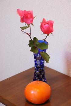 薔薇と柿.JPG